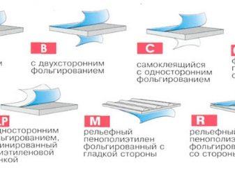540650a8b3127515a6ef6c9824def70a.jpg