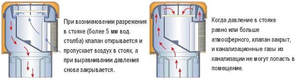 8c59f8da6875929f8247a766b72d7fba.jpg