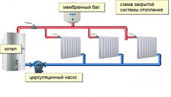 da2c47914568101c7a9774241a3d405d.jpg